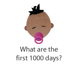 What are the first 1000 days?